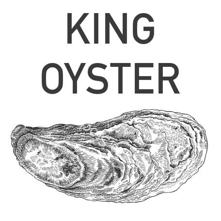 King Oyster