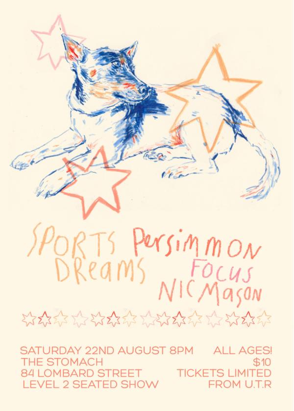 Sports Dreams, Persimmon, Nic Mason, Focus