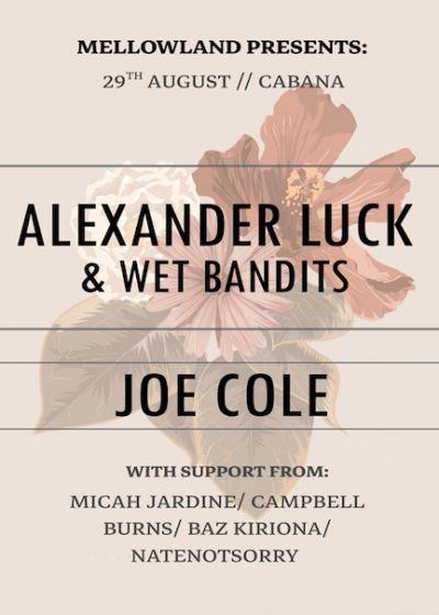 Mellowlands 10: Alexander Luck And Wet Bandits + Joe Cole