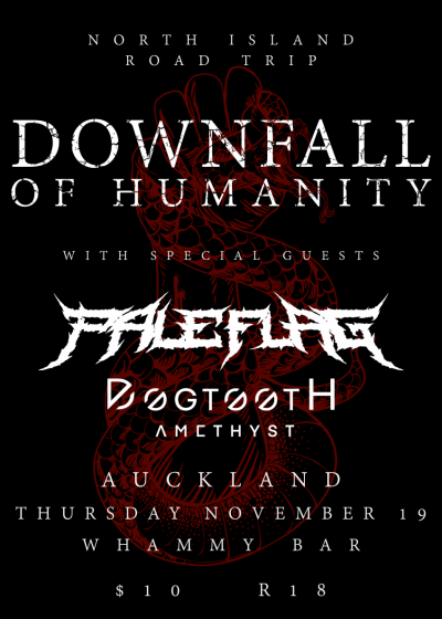 Downfall Of Humanity w/ Pale Flag + Dogtooth Amethyst
