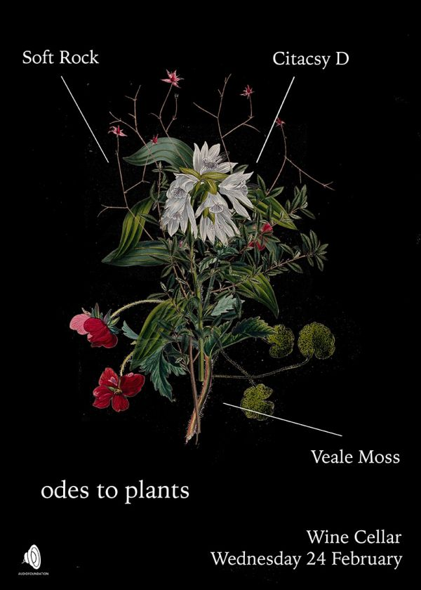 Ode To Plants - Soft Rock, Veale Moss, Citascy D