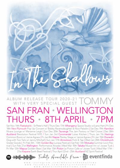 In The Shallows - Album Tour Wrap Party!