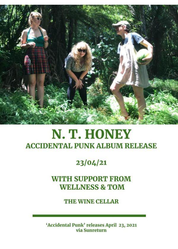 N. T. Honey - 'Accidental Punk' Album Release