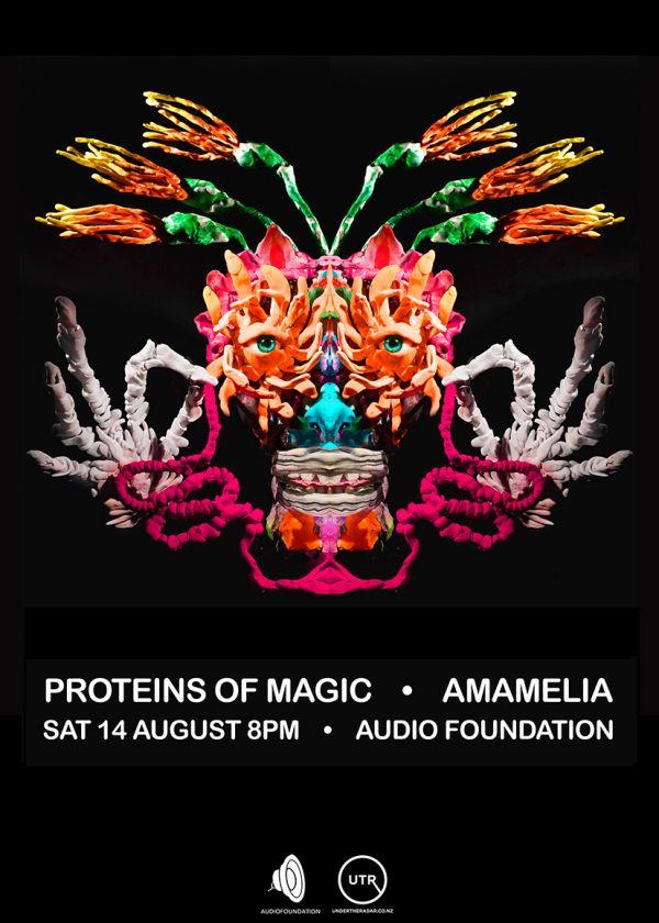 Proteins Of Magic, Amamelia