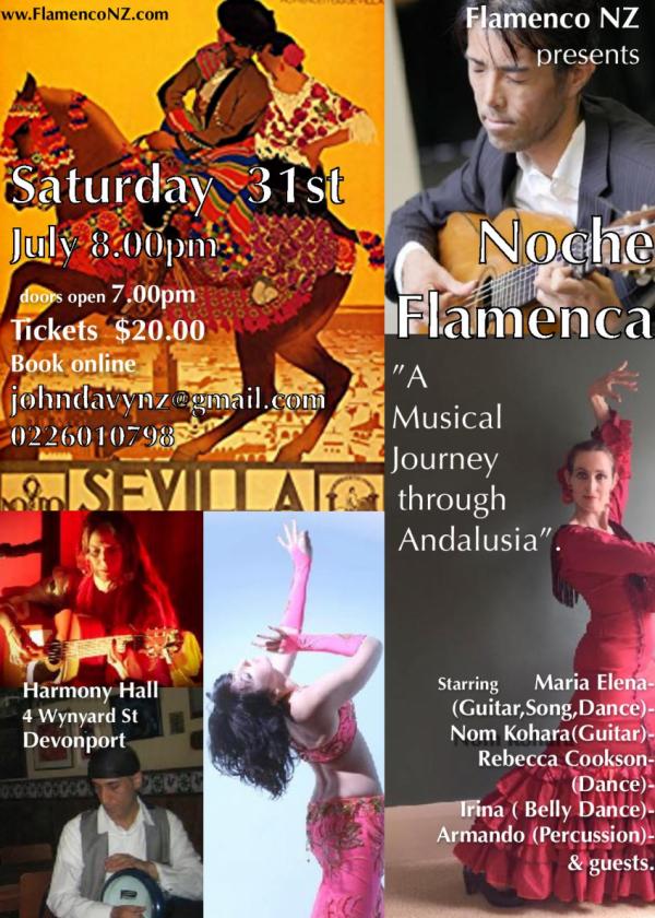 Noche Flamenca - Musical Journey Through Andalucia
