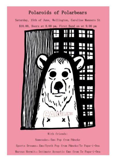 Polaroids of Polarbears, Namesake, Sports Dreams, Marcus Hermit