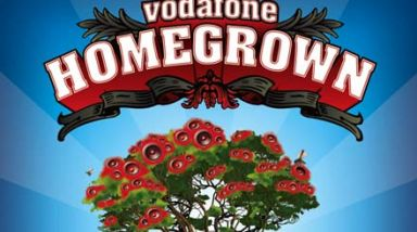 Early bird tickets almost gone for Homegrown fest