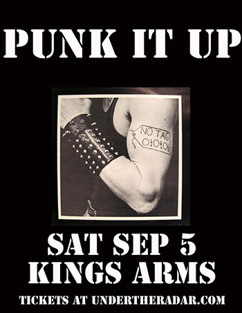 Punk It Up