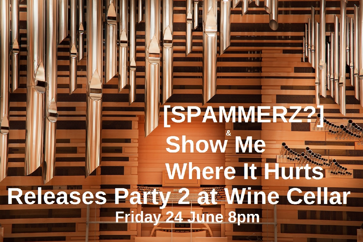 Show Me Where It Hurts And Spammerz  Double Release Party
