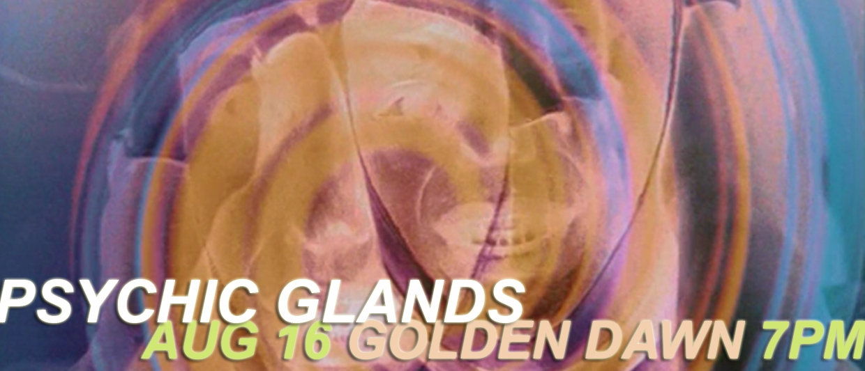 Psychic Glands DJ Set