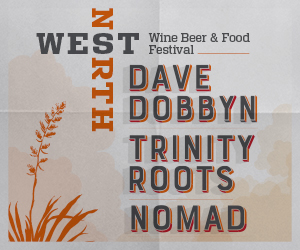 Dave Dobbyn, Trinity Roots and Nomad