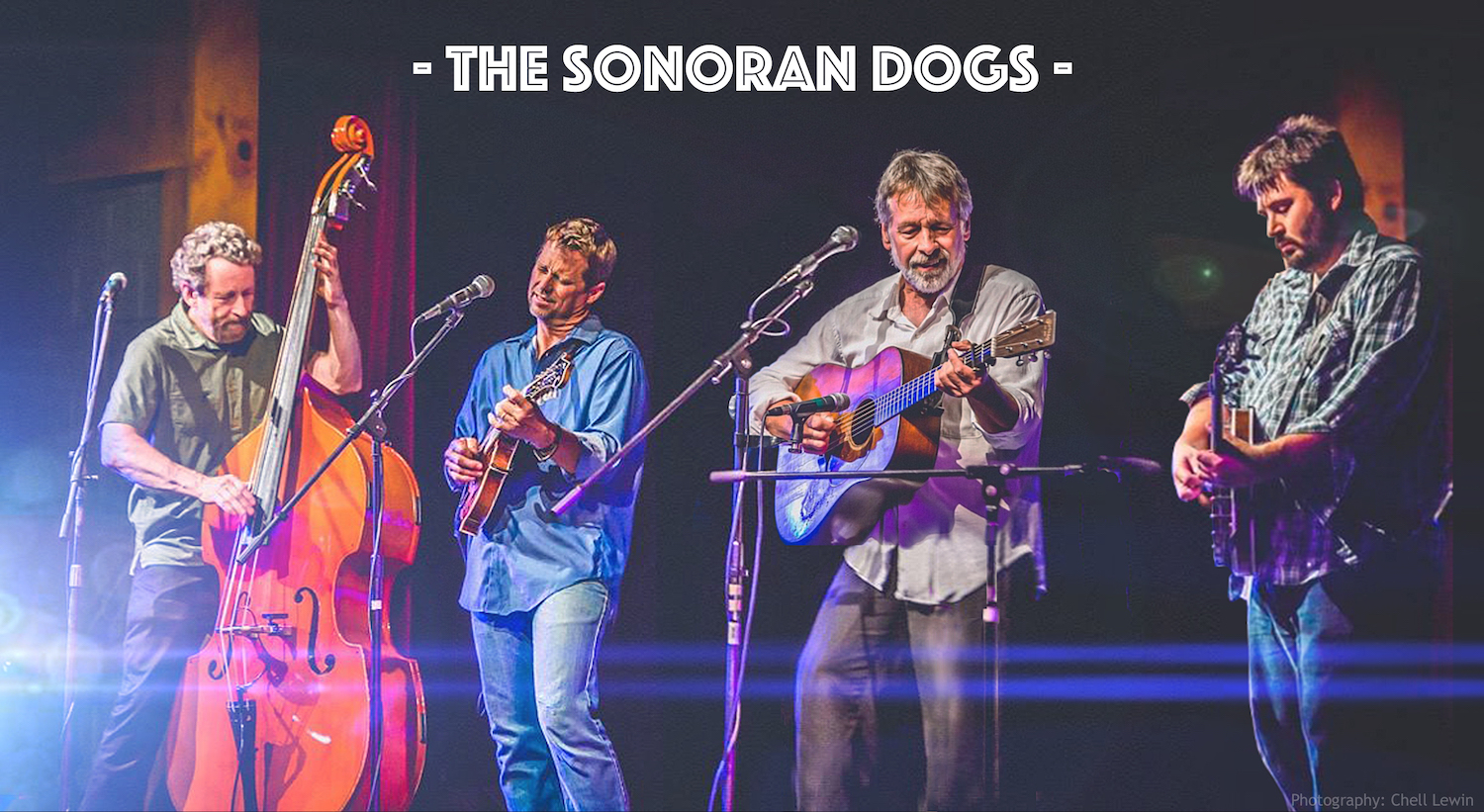 The Sonoran Dogs