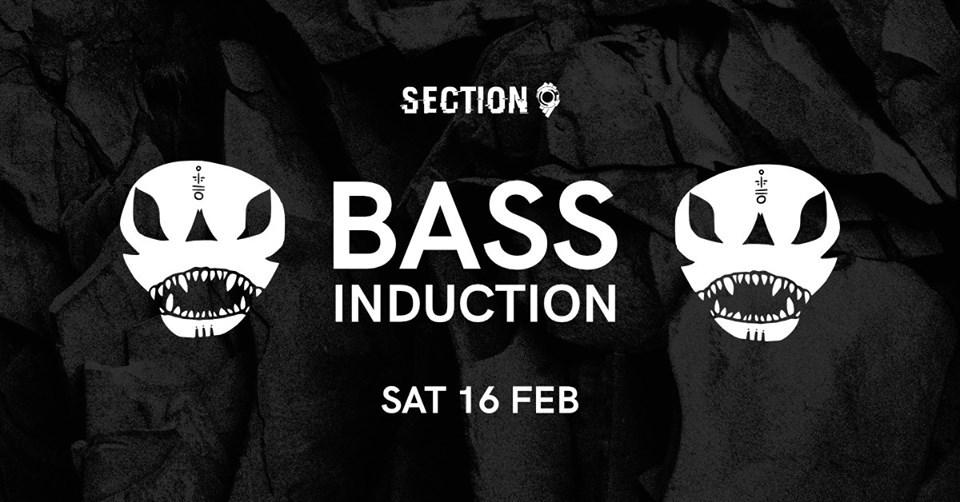 Section 9: Bass Induction
