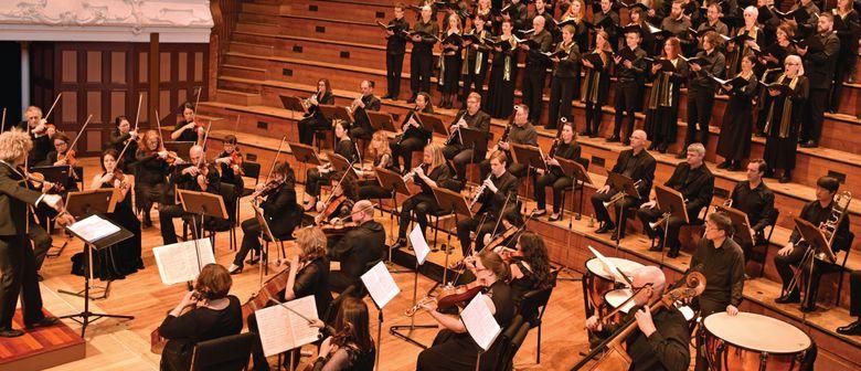 Bach Musica NZ: A French Christmas