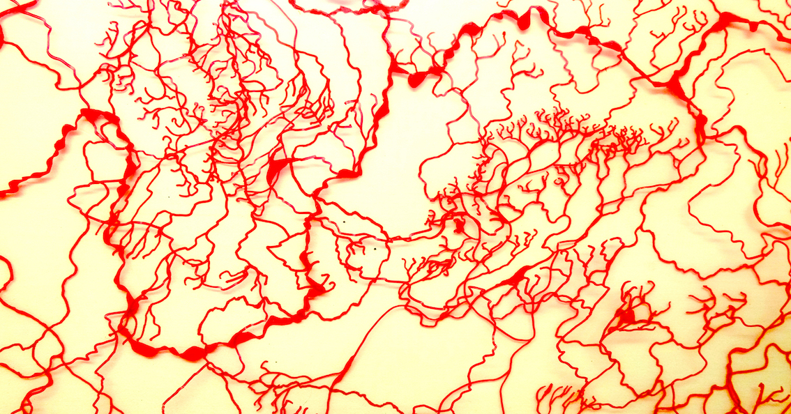 Exhibition Opening: Treefrog 'David Sanders' - Implausible Geography