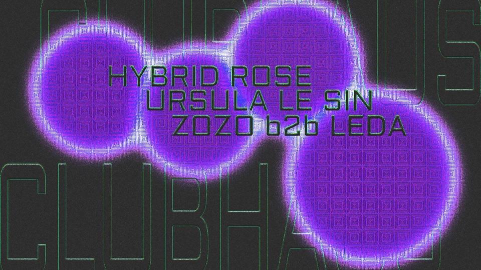 Hybrid Rose, Ursula Le Sin, zozo b2b Leda