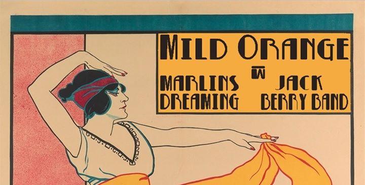 Mild Orange, Marlins Dreaming, Jack Berry Band